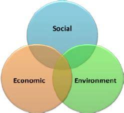 Social economic issues essay